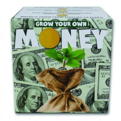 Grow your own - Vypěstujte si peníze