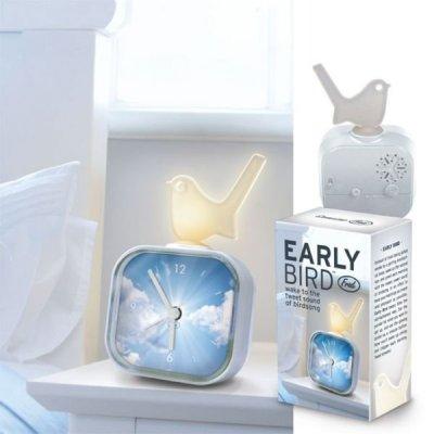 Budík pro ranní ptáčata