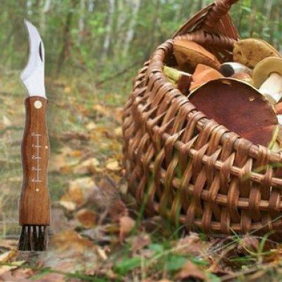 Nůž pro houbaře