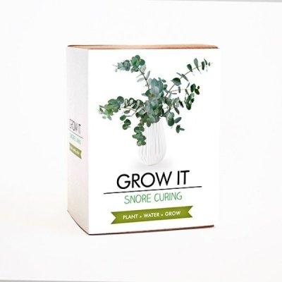 Grow it - rostlinka proti chrápání