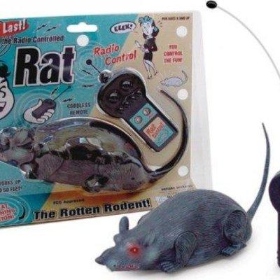 Krysa na dálkové ovládání