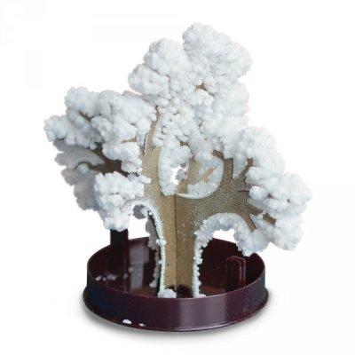 Zimní bonsai - bílá